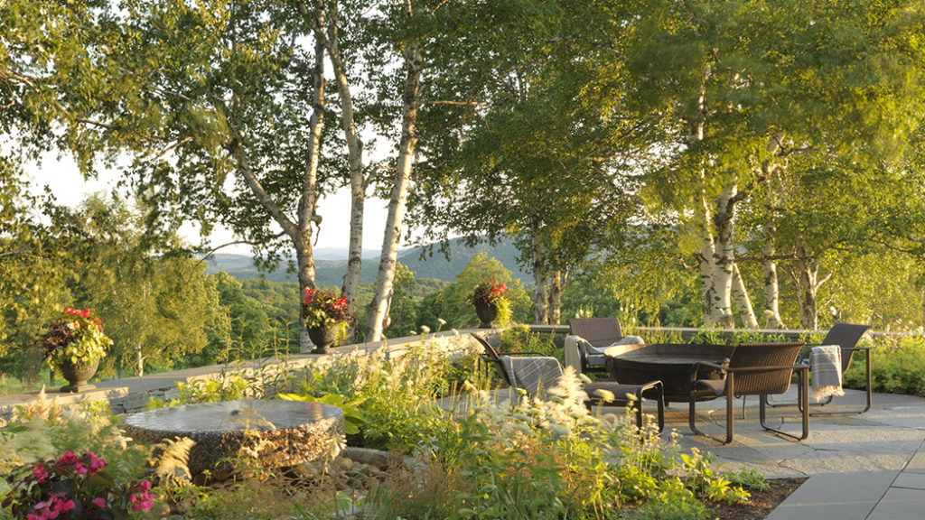 Vt Mountain Views Framed By Papery White Trunks Inspire