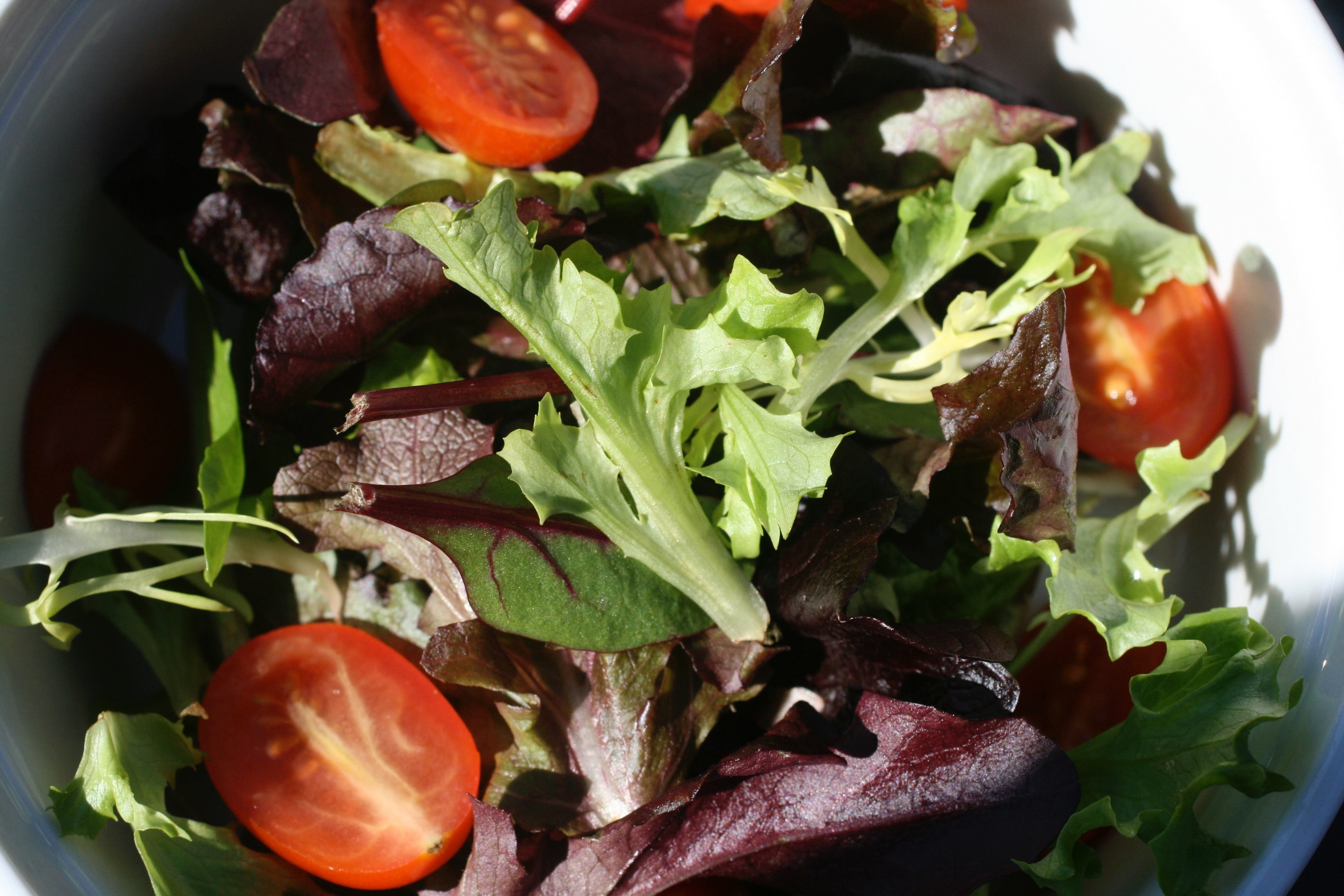 Is homegrown food safer? Not necessarily. Take these precautions.